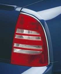 Stainless steel strip for tail light